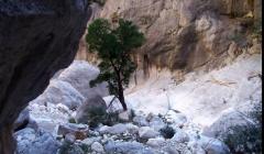 Gola di Gorropu: il canyon più grande d'Europa | VIDEO